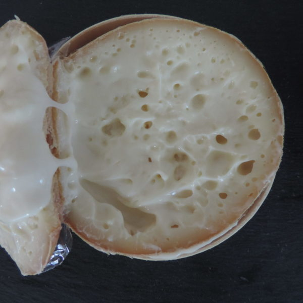 Tour del queso en Cáceres, España