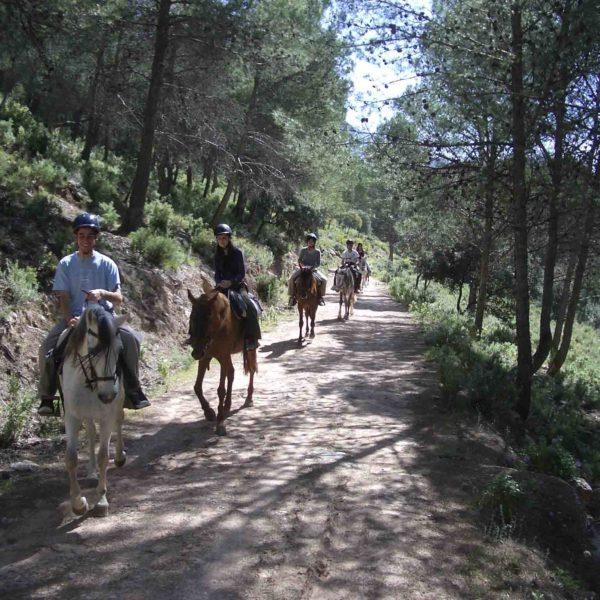 Ruta a caballo 2 horas Peña Horadada - Sierra de Ronda en Málaga, España