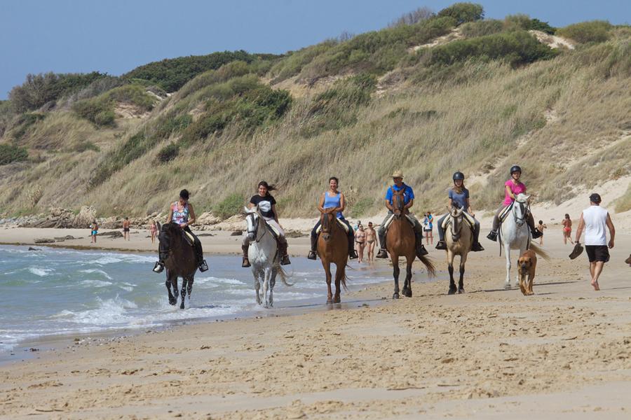 Rutas a caballo Tarifa en Cadiz 1 Hommter