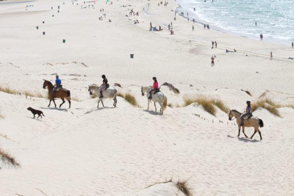 Rutas a caballo por las dunas en Tarifa, Cádiz, España