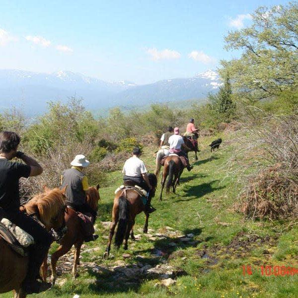 Rutas a caballo 2h El Boalo, Sierra de Madrid, España