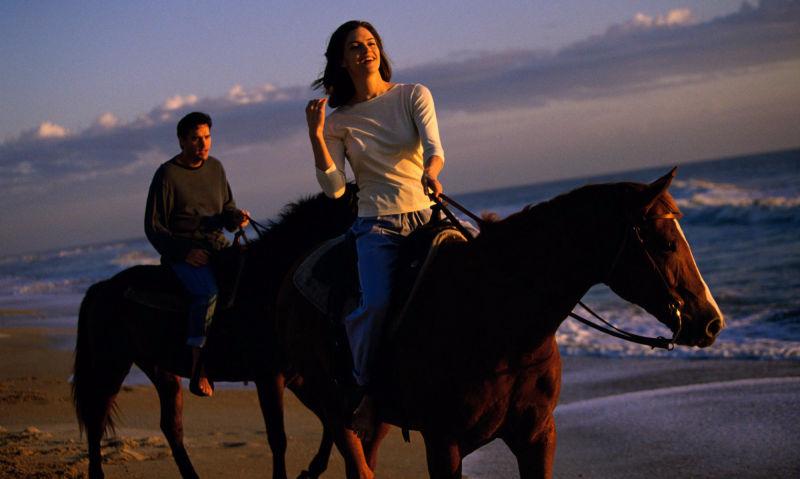 Rutas a caballo por Doñana Sevilla Hommter