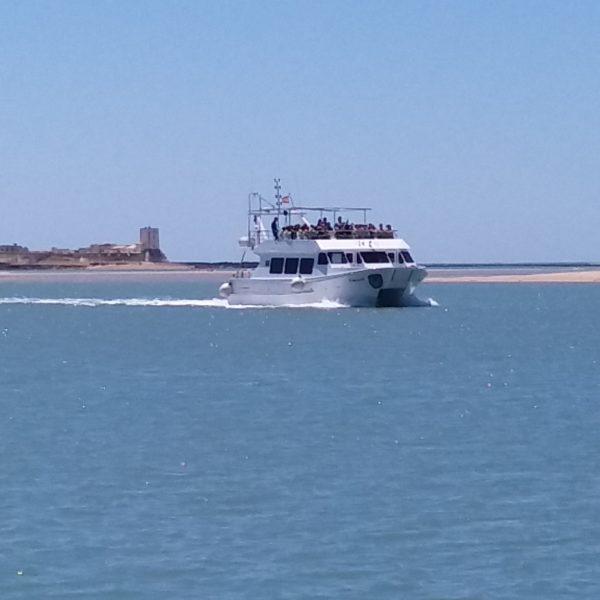 Catamarán por la tarde Castillo Santci Petri y Parque Natural, Cádiz, España