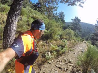 Trail running con guía especializado en Tenerife, España
