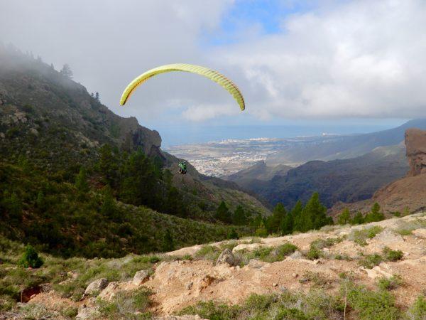 Vuelo largo Taucho o Ifonche, Tenerife, España