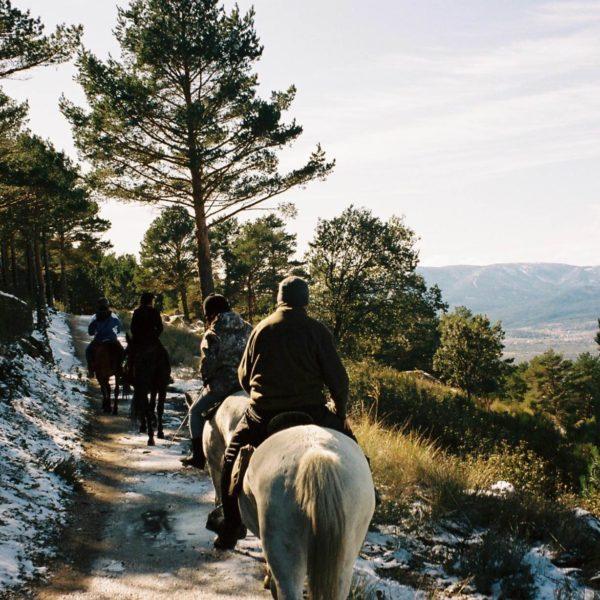 Ruta a Caballo 2 horas Sierra de Guadarrama y Parque Nacional, Madrid, España