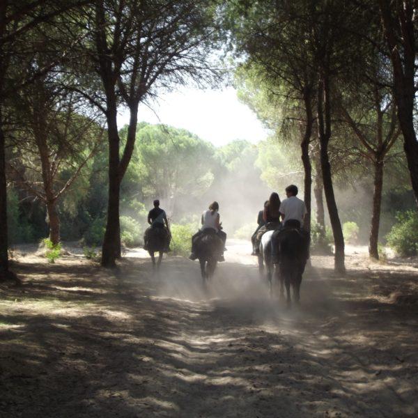 Ruta a caballo 'Territorio Lince', Huelva, España