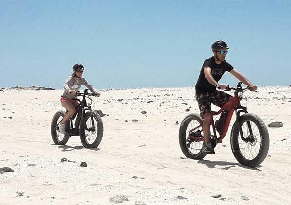 Excursión bicicleta eléctrica en Parque Natural de Collserola + degustación