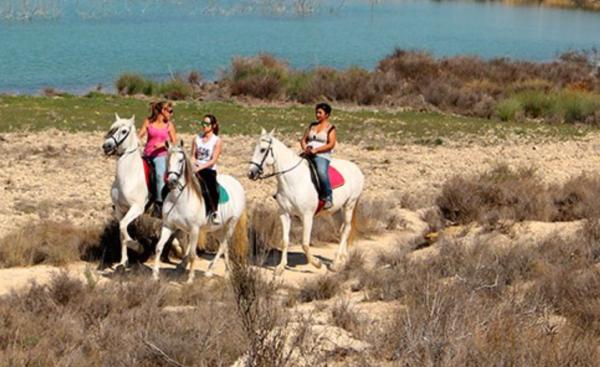 Excursión a caballo en el lago de la Pedrera - Orihuela
