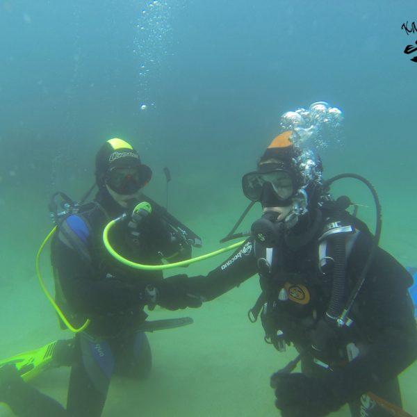 Curso buceo Gran Canaria, Rescue Diver+1ºauxilios, España
