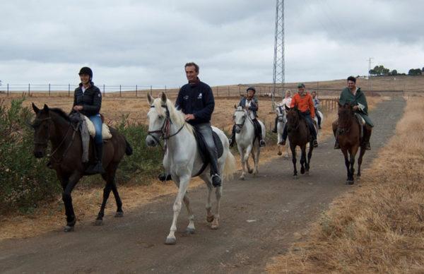 Ruta a caballo por el Bosque de Las Pinedas, Córdoba, España