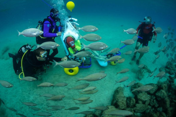 Sea Trek adaptado en Lanzarote, Las Palmas, España