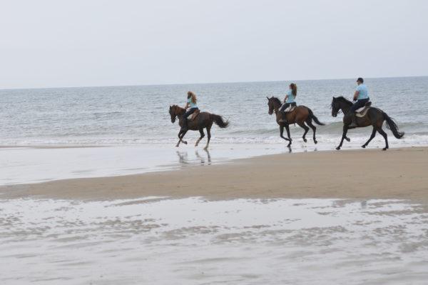 Paseo privado a caballo playas de Doñana, Huelva, España