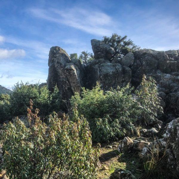 Ruta senderismo/trekking, Sierra de Guadarrama, Madrid, España