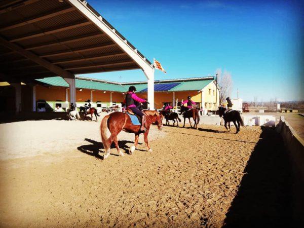 Ruta a caballo Ribera del Ebro, Zaragoza, España