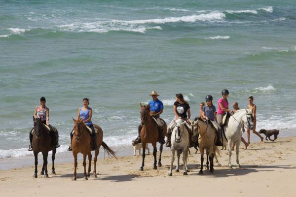 Rutas a caballo por las dunas de Tarifa, Cádiz, España