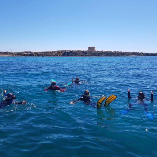 Excursión snorkel Isla Tabarca, Alicante, España