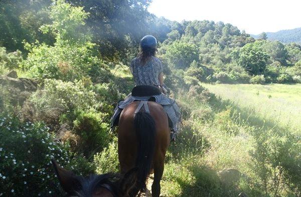 Ruta a caballo 4 horas Málaga, Sierra de las Nieves, España