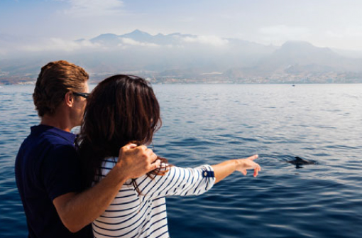 Paseo en Catamarán, Santa Cruz de Tenerife
