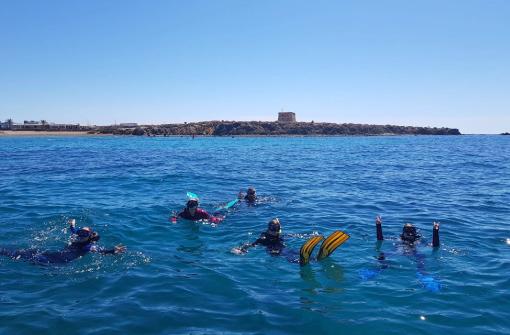 Inmersión en Reserva Marina Isla Tabarca, Alicante
