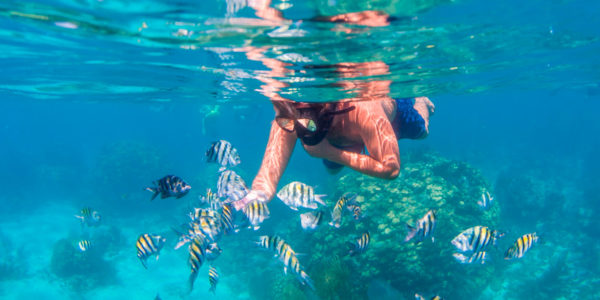 Snorkel, Alicante, España