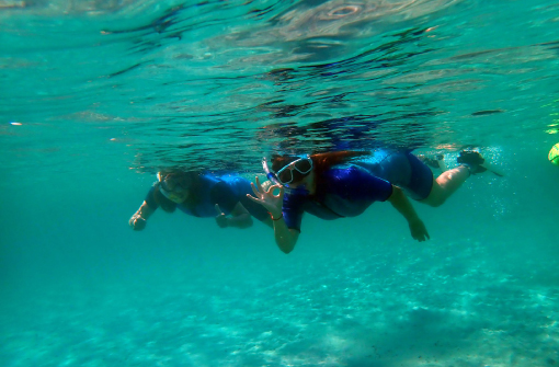 Excursión Snorkel en Isla de Tabarca, Alicante