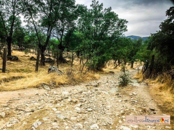 Ruta de Senderismo Camino Miaccum, Madrid, España
